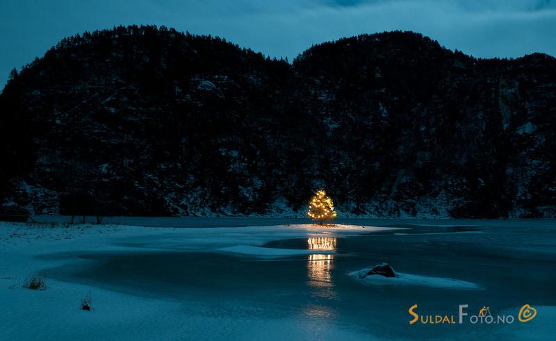 Julatre ved Suldalsvatnet